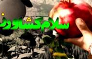 فیلم برنامه سلام کشاورز ویژه جشن قصب و خرمای فراشبند