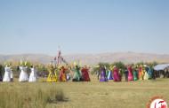 جشن عروسی عشایر قشقایی به روایت تصویر