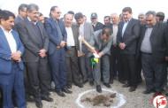 گزارش تصویری از افتتاح پروژه های دولت در شهرستان فیروزآباد
