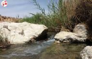 آبنیلو ، نمادی از ضعف مدیریت بحران آب در دشت ممنوعه فراشبند + عکس