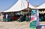 در آستانه شکفتن گلهای بهاری ۹۷ اولین جشنواره کنار فراشبند رقم خورد