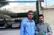 تحویل یک بهله پرنده شکاری قرقی آسیب دیده به اداره محیط زیست فراشبند