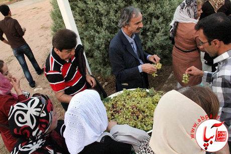 11121 جشن باستانی «خوراکیها» در ایران