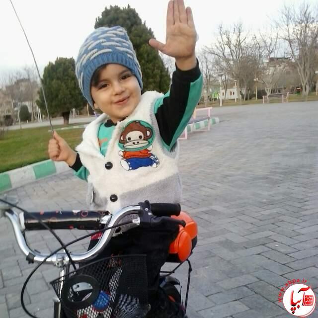 نیکراد محمدی