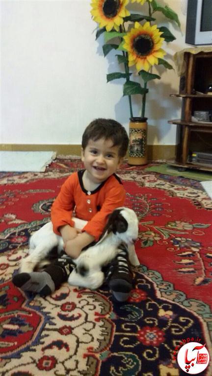 آرمین-اسلامی-Medium گالری عکس گلها ... این کودکان دوست داشتنی ... سری جدید