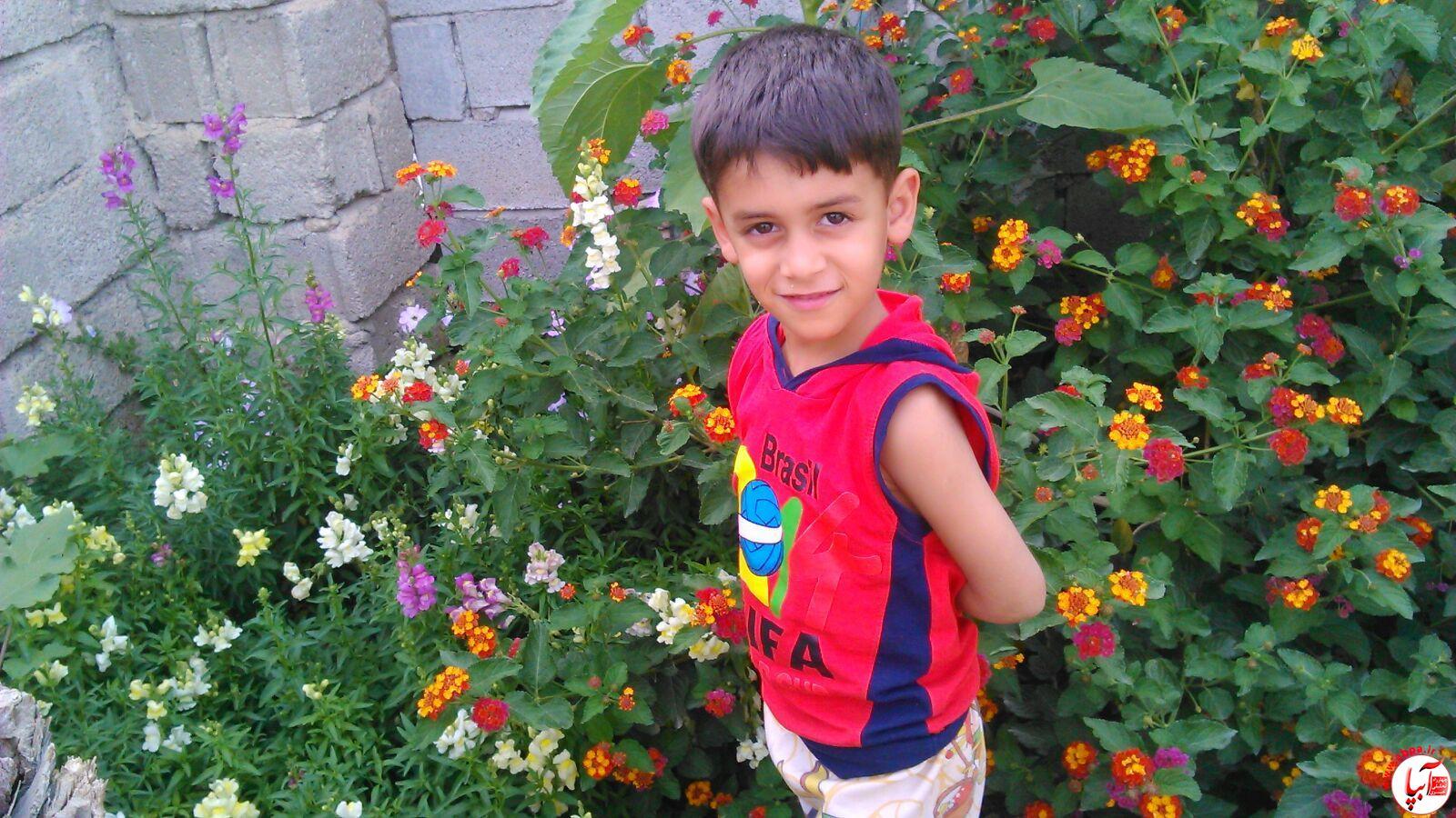 آرمین رحیمی