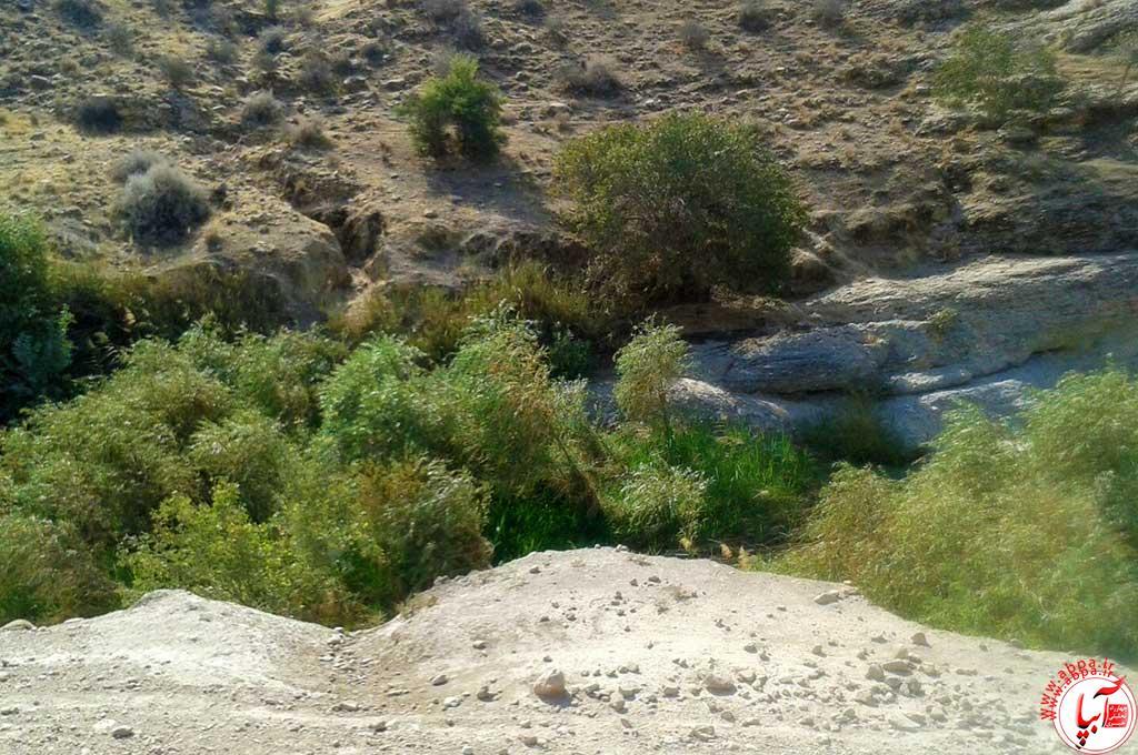 چشمه روستای خلجی
