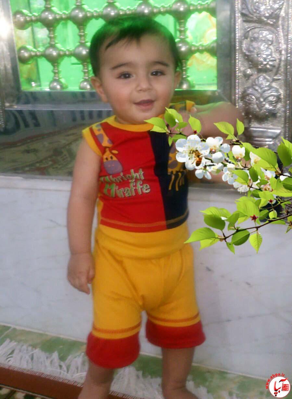 سید محمد امیرسادات
