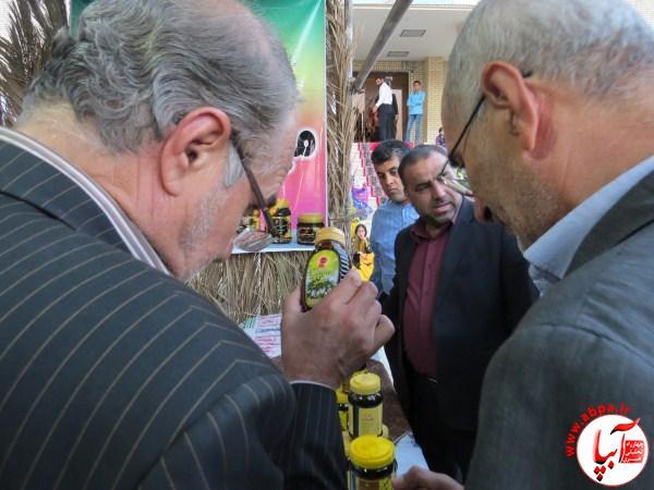 IMG_1571 گزارش تصویری از جشنواره قصب و خرمای فراشبند سری اول