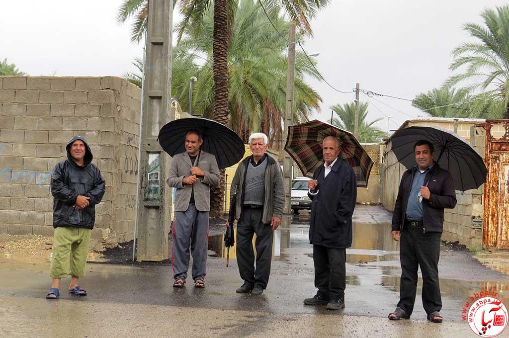 باران فراشبند (1)