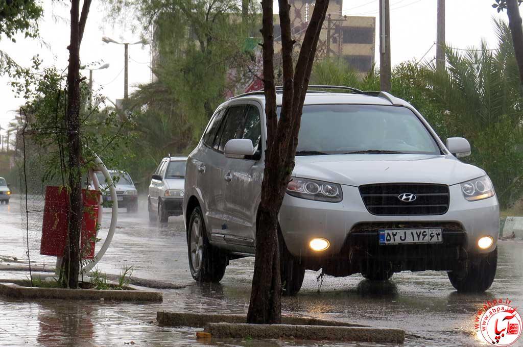 باران فراشبند (7)