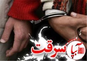 4347344_755 اجرای طرح های مبارزه با سرقت در سطح شهرستان فیروزآباد