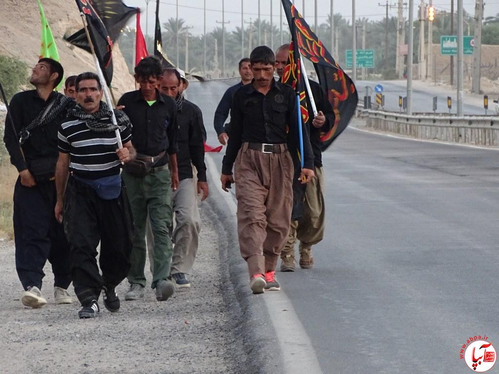 آبپا-27-1 عبور زائرین پیاده امام حسین از فراشبند / تصویر
