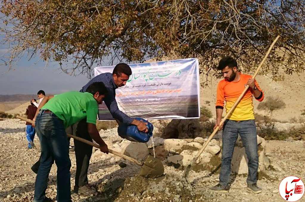 حامیان مردمی محیط زیست در اقدامی خودجوش دست به نجات درخت بنه در حال مرگ زدند.
