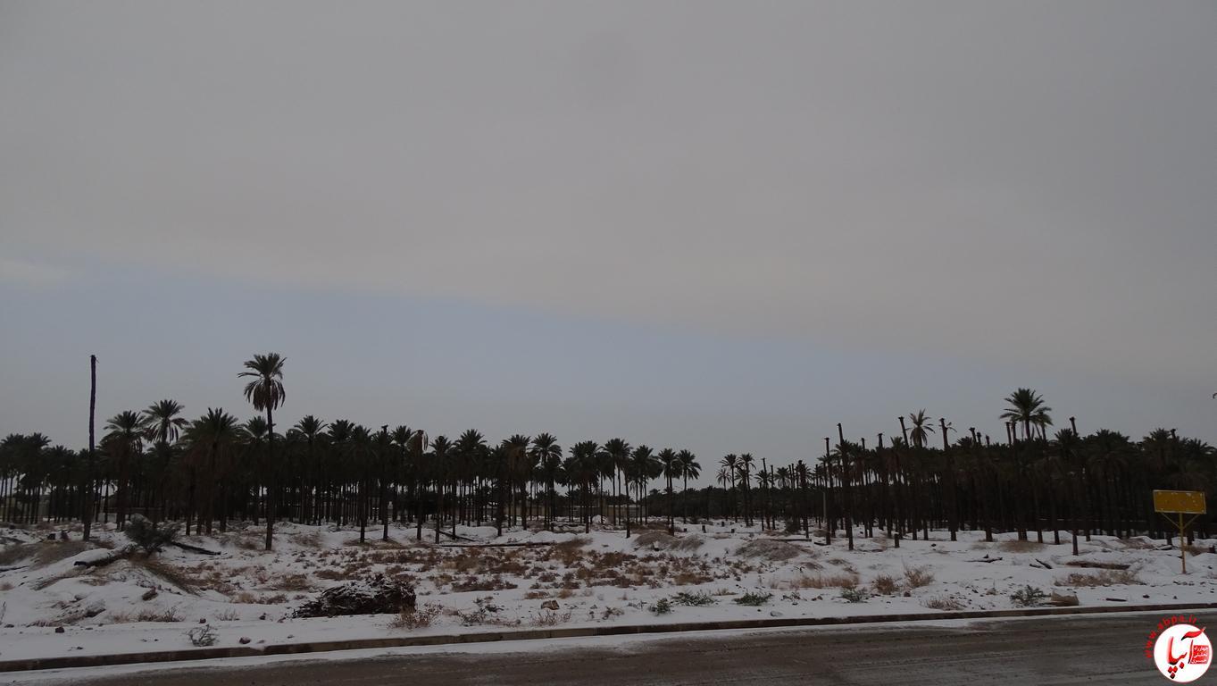 آبپا برف (115)