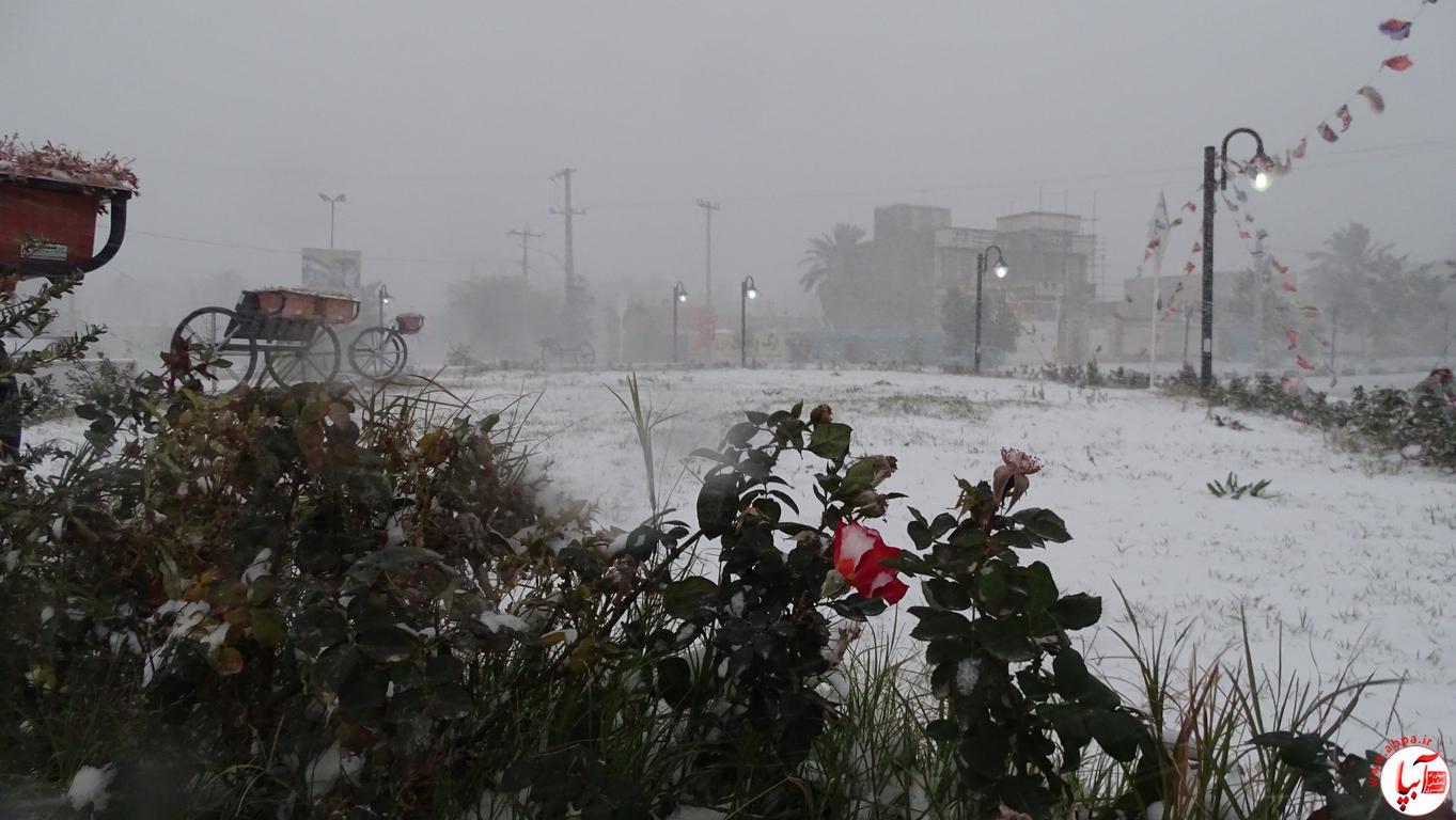 آبپا برف (44)