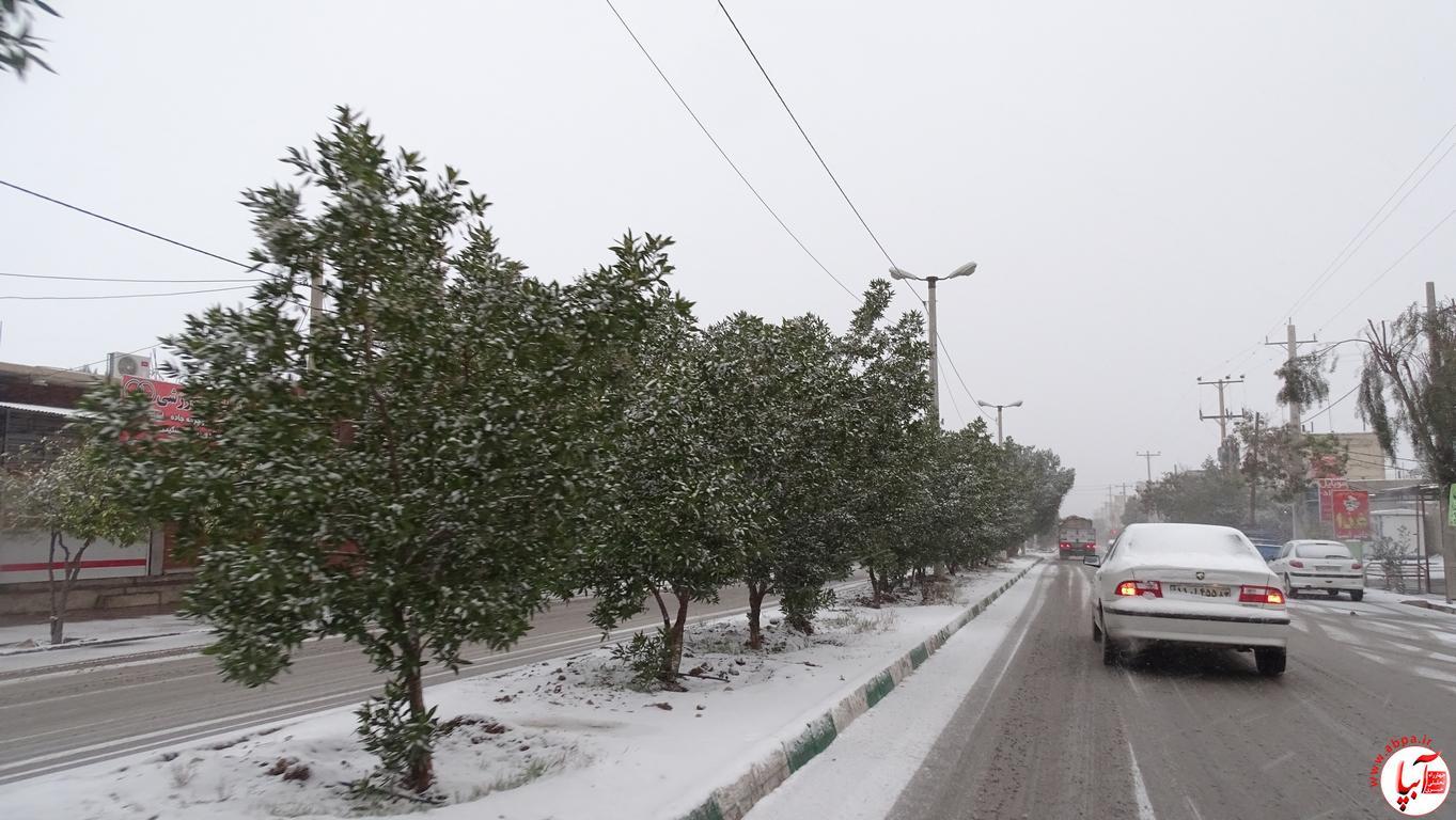 آبپا برف (56)