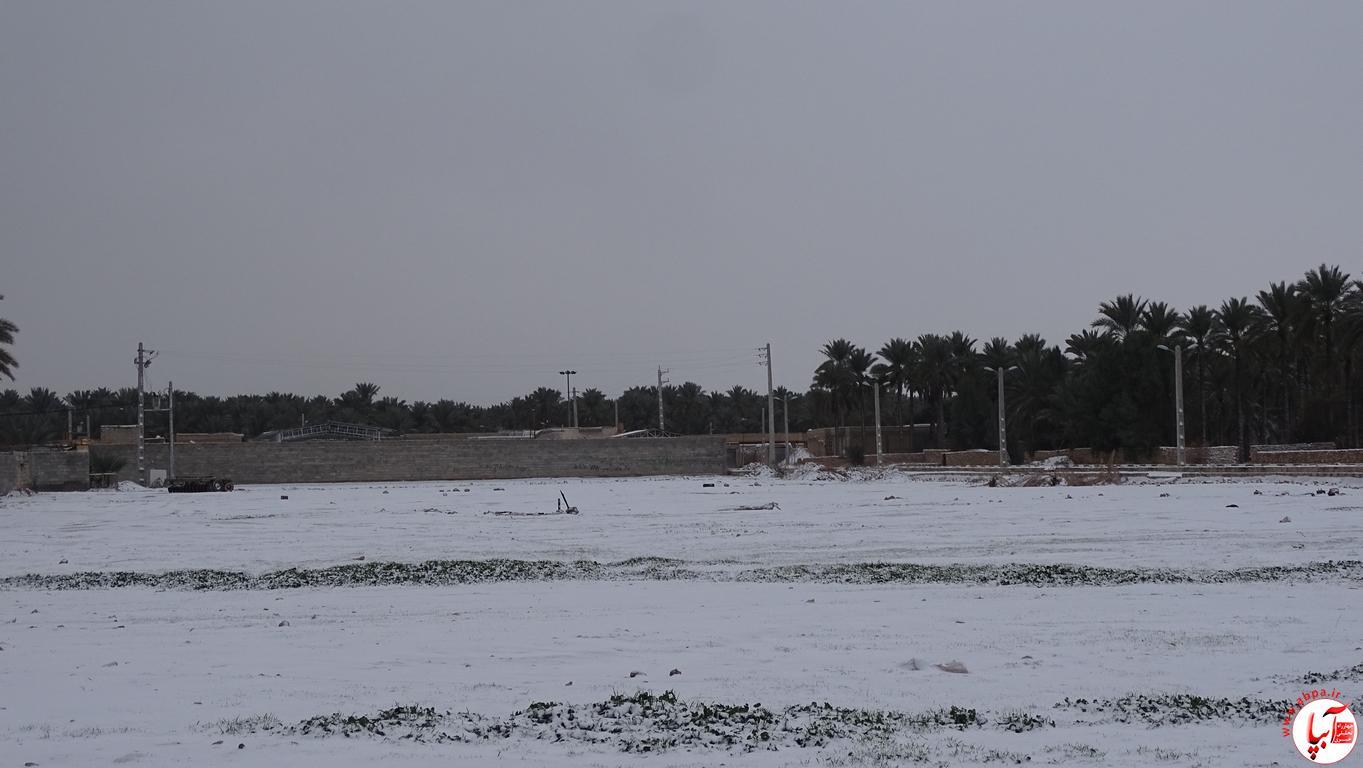 آبپا برف (71)