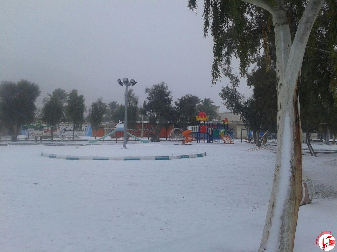برف (1)