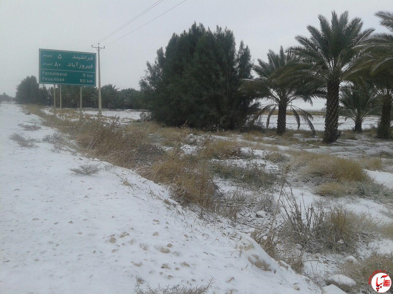 برف (3)