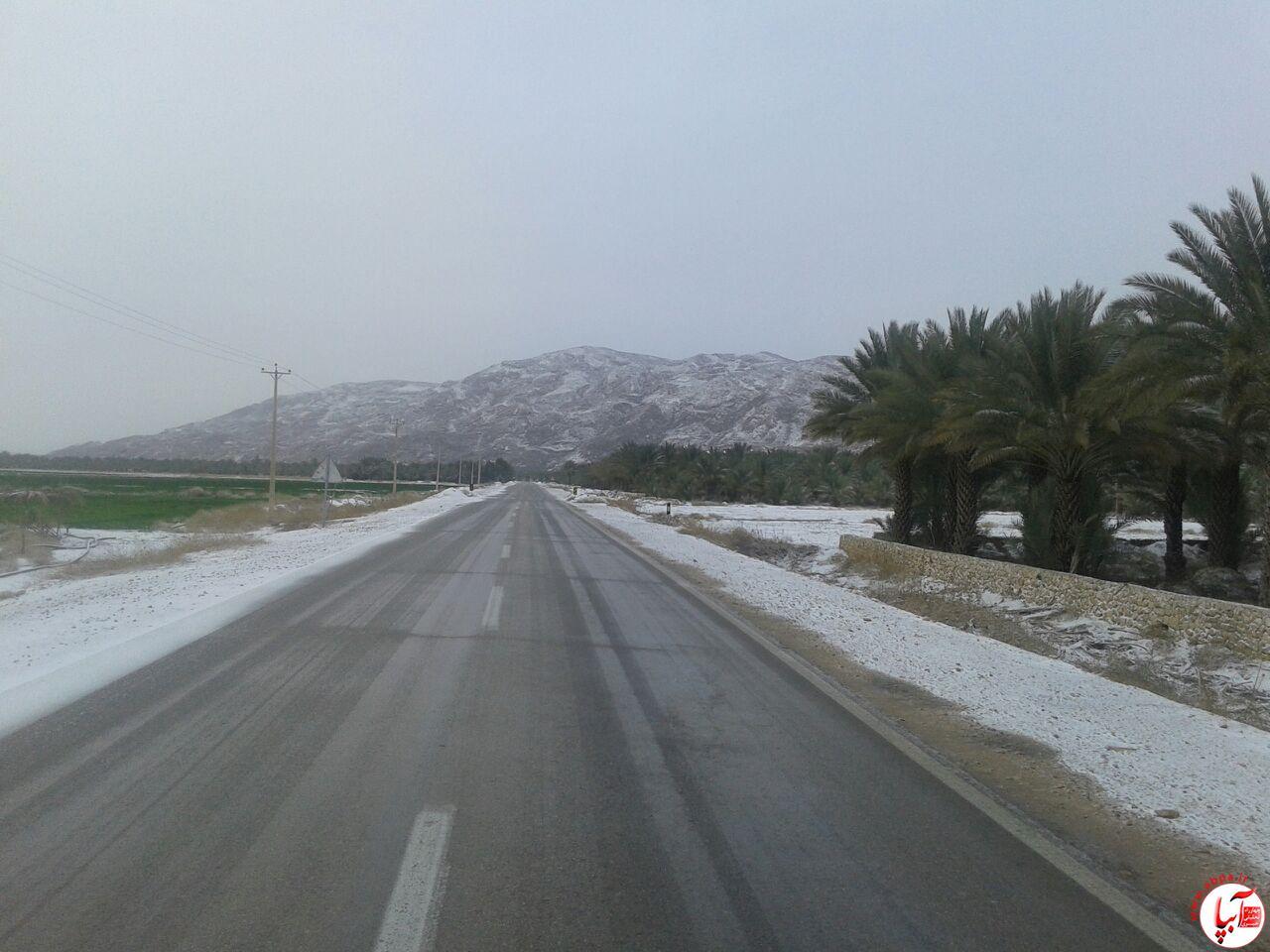 برف (5)