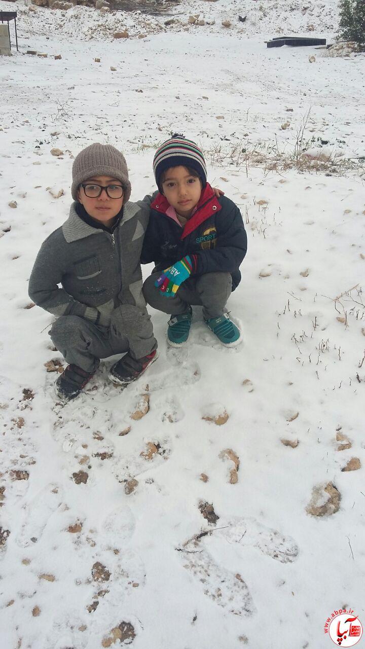 IMG-20170203-WA0052 گالری عکس زمستانه ی کودک آبپا