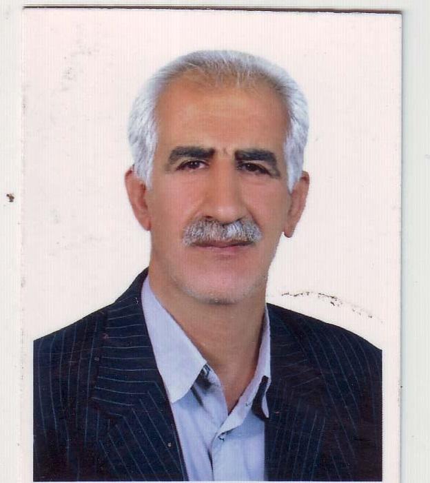 محمد حسین بحرانی فرد