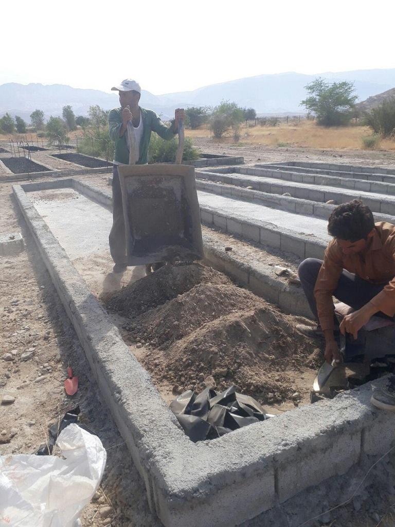 photo_2017-08-19_17-53-52 کاشت 50000 اصله نهال در نهالستان نوجین