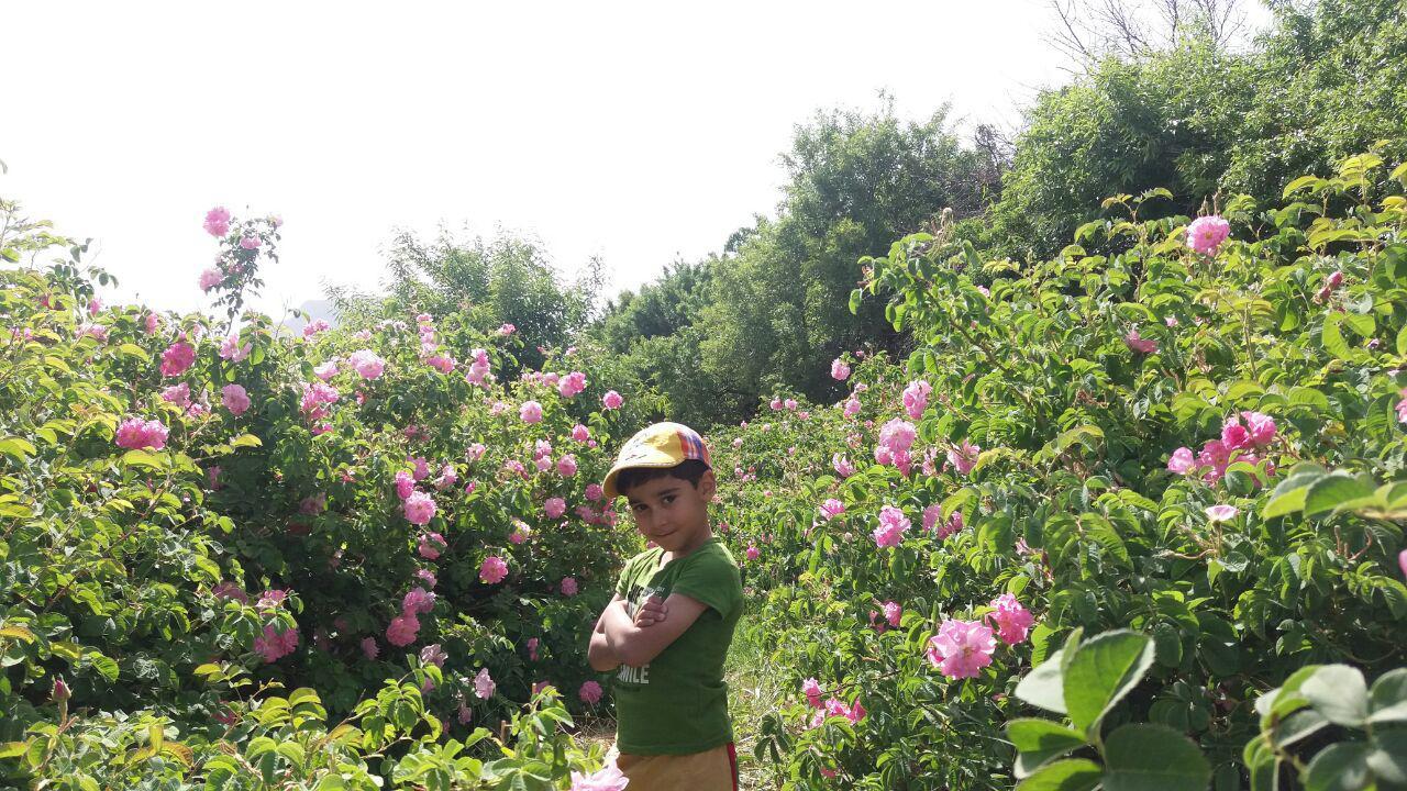 متین-رضانژاد گلهای فراشبند ؛ سری جدید گالری عکس کودکان آبپا
